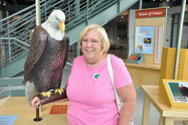 day-151-national-eagle-center-mn-5623_fotor