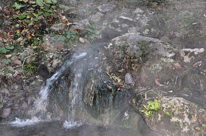 day-209-hot-springs-ar-8387_fotor